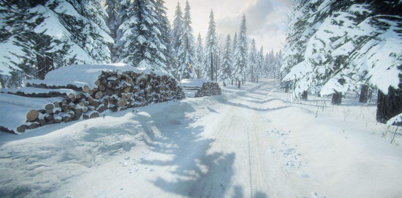 Новое дополнение добавляет в DiRT Rally 2.0 «Ралли Швеции»